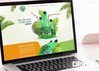 Criação de site - Coco Goiás - Água de Coco Natural